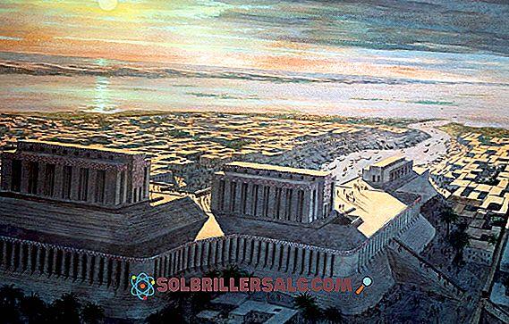 Le 3 prime civiltà del mondo e le loro caratteristiche
