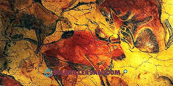 Homem de Toquepala: descoberta, características