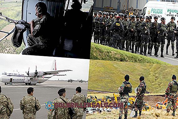 Apa itu Anarki Militer Peru?