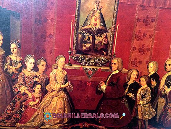 Quelles étaient les fonctions du vice-roi en Nouvelle-Espagne?