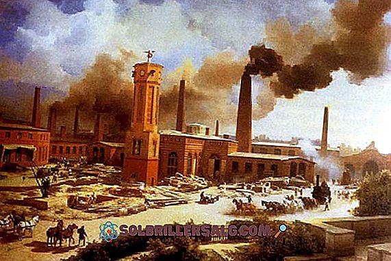 Pramonės revoliucija Čilėje: priežastys ir pasekmės