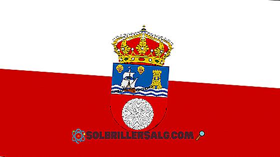 Stema de la La Rioja (Argentina): Istorie și semnificație