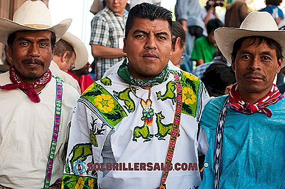I 4 gruppi etnici di Jalisco Principales