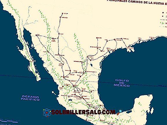Utviklingen av interne kommersielle nettverk i New Spain