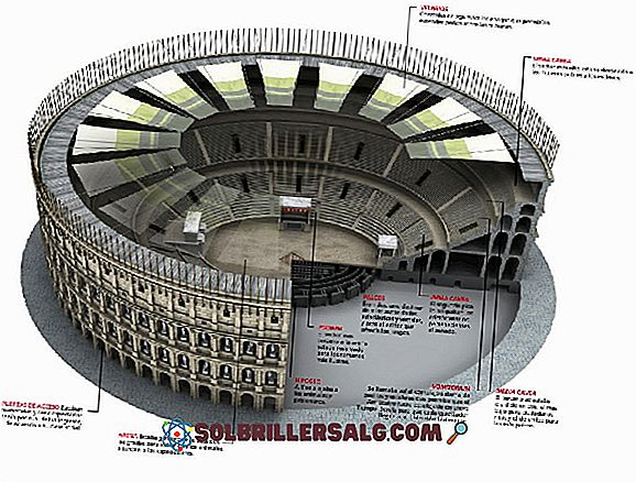 Roman Circus: son origine, ses pièces, ses fonctions