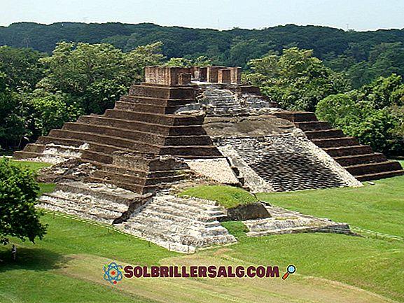 Quali erano i centri cerimoniali Olmec?