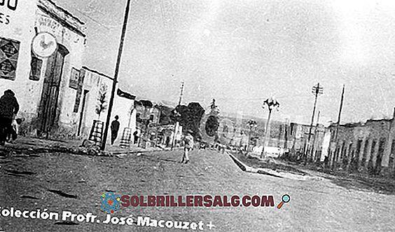 Guadalupe Victoria: biografia, rząd i składki