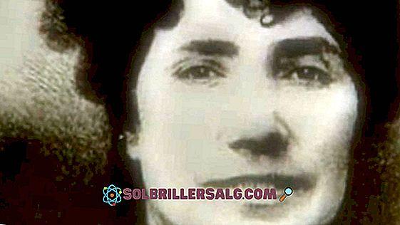 Rosalía de Castro: биография и произведения