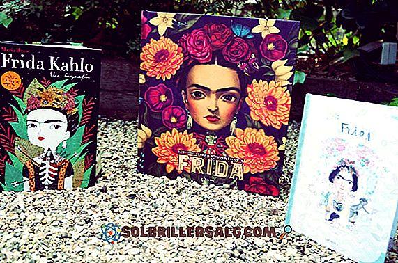 bøker - De 15 viktigste bøkene om Frida Kahlo