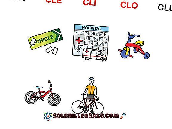 +1000 Wörter mit Cla, Cle, Cli, Clo und Clu