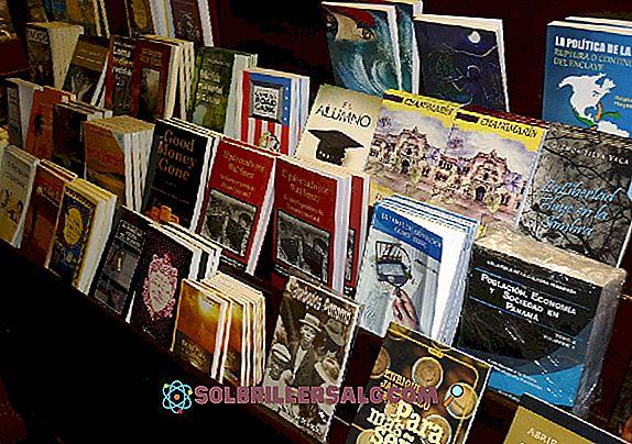 Literatura de vanguarda: origem, características, autores e obras