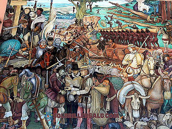 Mayan litteratur: Ursprung och historia, egenskaper, författare och verk