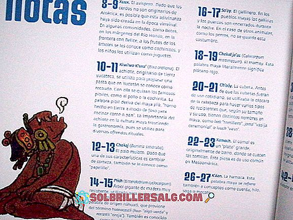 10 poezii în Maya și traducerea sa spaniolă