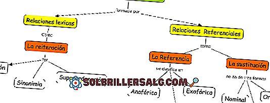 Textuelle Mikrostruktur: Eigenschaften und Beispiele