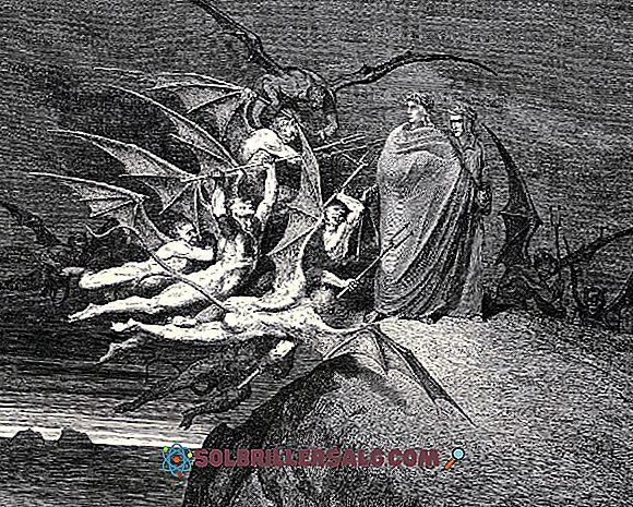 Di cosa parla la Divina Commedia?