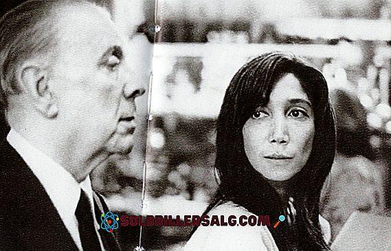 Jorge Luis Borges: biografi, verk