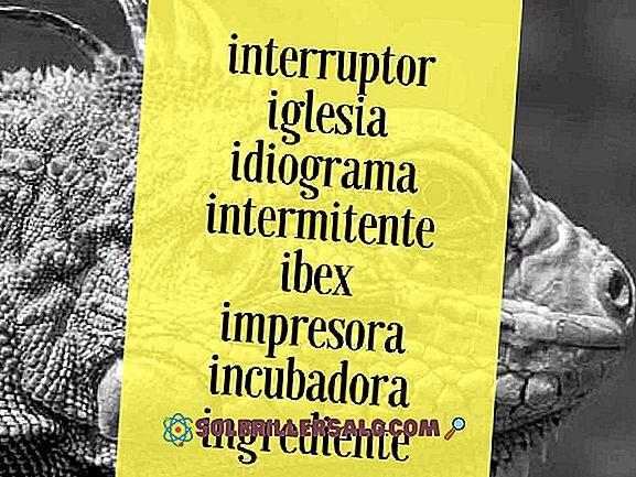 100 oggetti con la lettera A in spagnolo