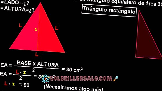Hur man beräknar sidor och vinklar av en triangel?