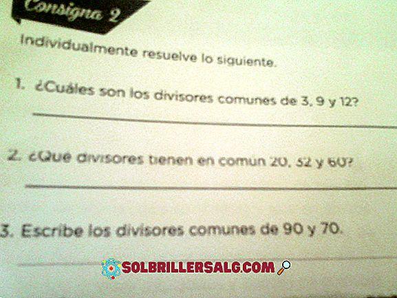 toán học - Số chia của 30 là gì?