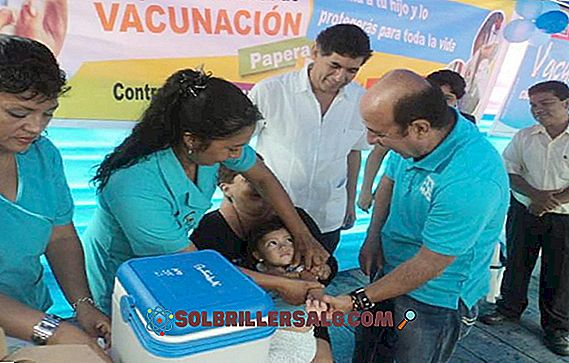 ما المقصود بحملات التطعيم؟