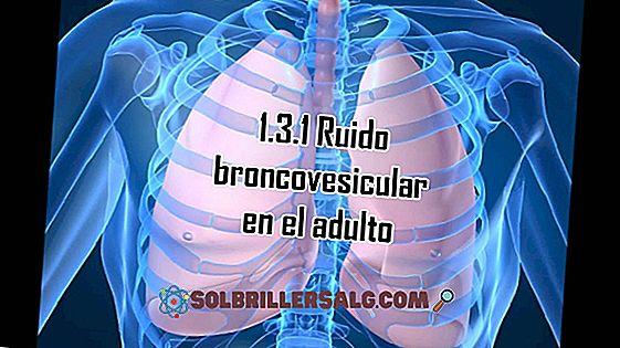 Cos'è l'auscultazione polmonare?