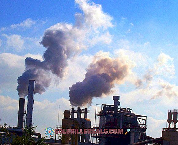 Vilka är naturresurserna i Venezuela?