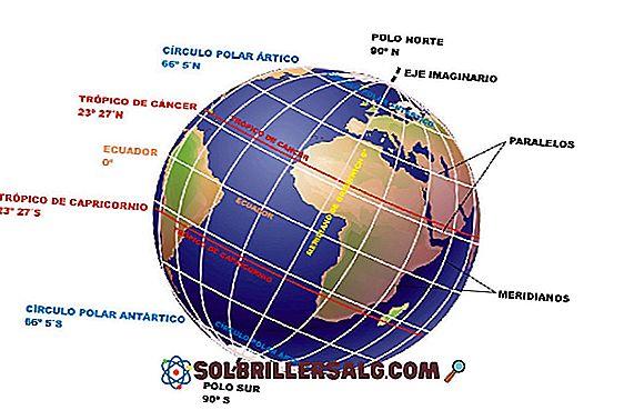 meio Ambiente - Por que a Colômbia não tem as 4 estações?
