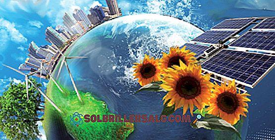 7 Keuntungan dan kerugian utama energi angin
