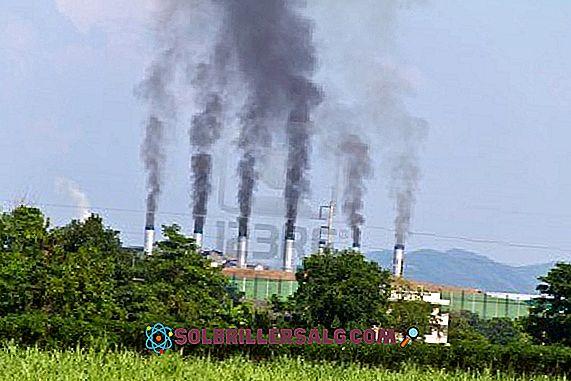 Forurensende fabrikker: egenskaper og typer
