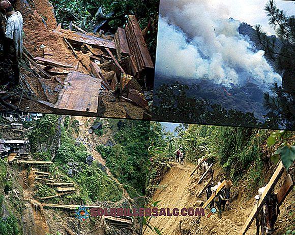 Какви са природните ресурси на Колумбия?