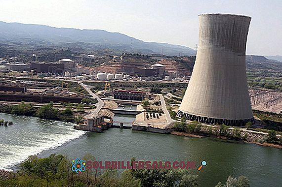 14 Vantaggi e svantaggi dell'energia nucleare