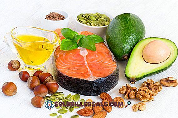 أغنى 12 أغذية في الدهون (الدهون الصحية)