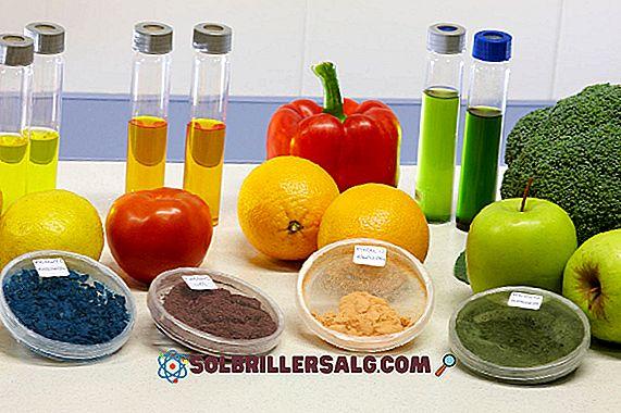 Matbestråling: Prosess, applikasjoner, fordeler og ulemper