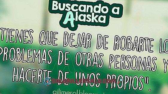 47 أفضل العبارات تبحث عن ألاسكا