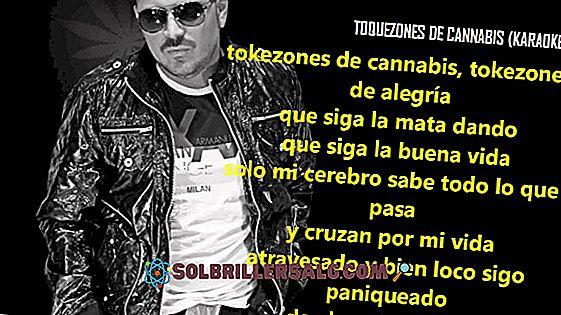 26 Great Corridos-setninger