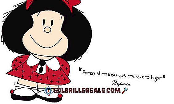 100 najlepszych fraz Mafaldy