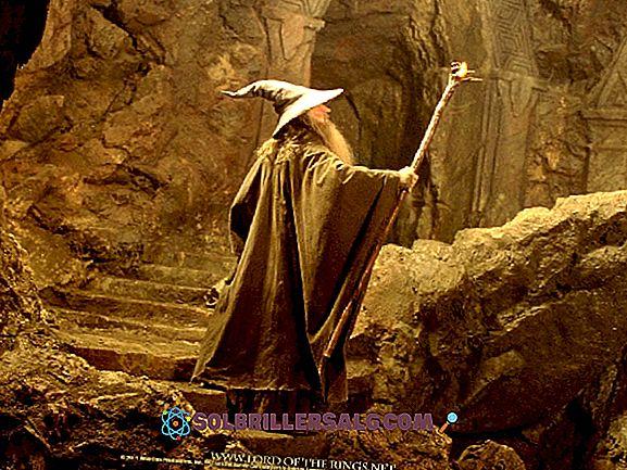 Le 47 migliori frasi di Gandalf