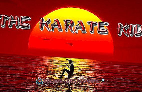 As 77 Melhores Frases De Karate Kid