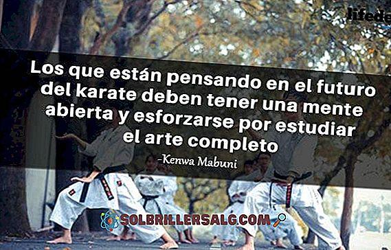 As 50 Melhores Frases Sobre O Karate