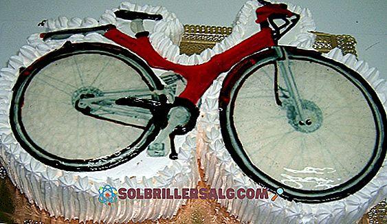 55 grandi citazioni di biciclette