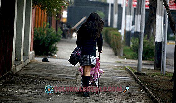 psikologi pendidikan - Kehamilan dini: risiko, penyebab, dan konsekuensi