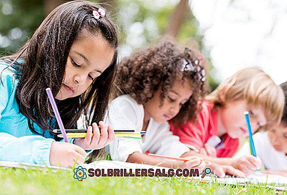 Ensinar modelos pedagógicos (tradicionais e atuais)