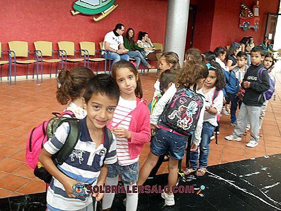 14-те най-добри образователни уебсайта за деца (с връзки)