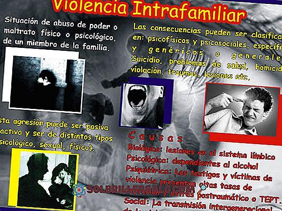 Violenza nell'adolescenza: tipi, cause, conseguenze e prevenzione