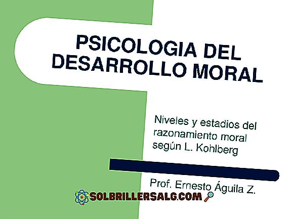 La théorie du développement moral de Kohlberg et ses 3 étapes