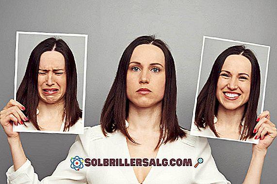 Apakah pengaturan diri emosional?