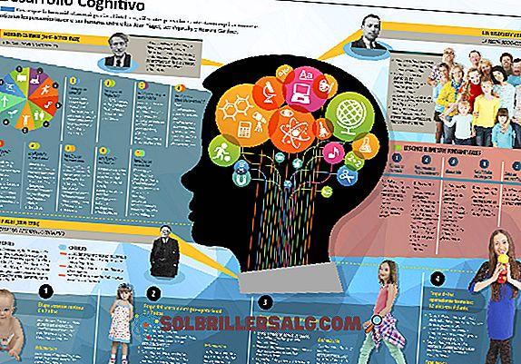 10 abilità cognitive dell'essere umano