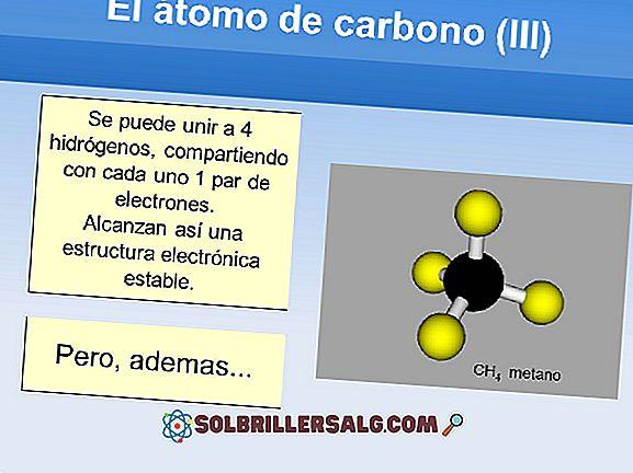 Wie viele Elektronen hat Carbon in Valencia?