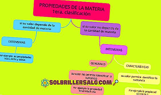 Sistemi materiali: classificazione, fasi ed esempi