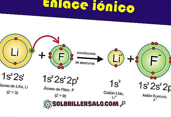 Molybdène: structure, propriétés, valences, fonctions